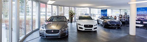 Jaguar Showroom